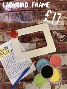 9. Laybird frame